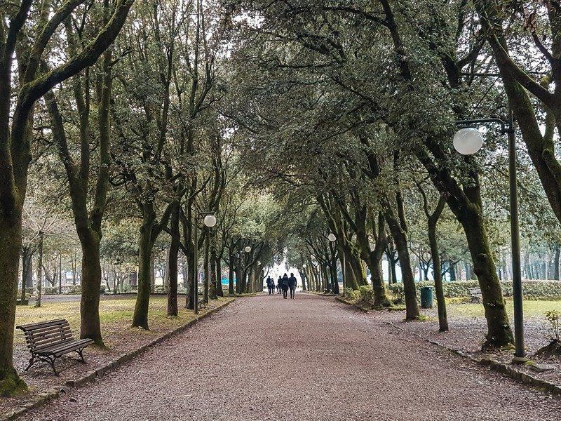 Il parco della fortezza medicea è la zona verde più grande dentro il centro storico di Arezzo. Un grande viale contornato da alberi e panchine su cui sedersi e rinfrescarsi in piena tranquillità.