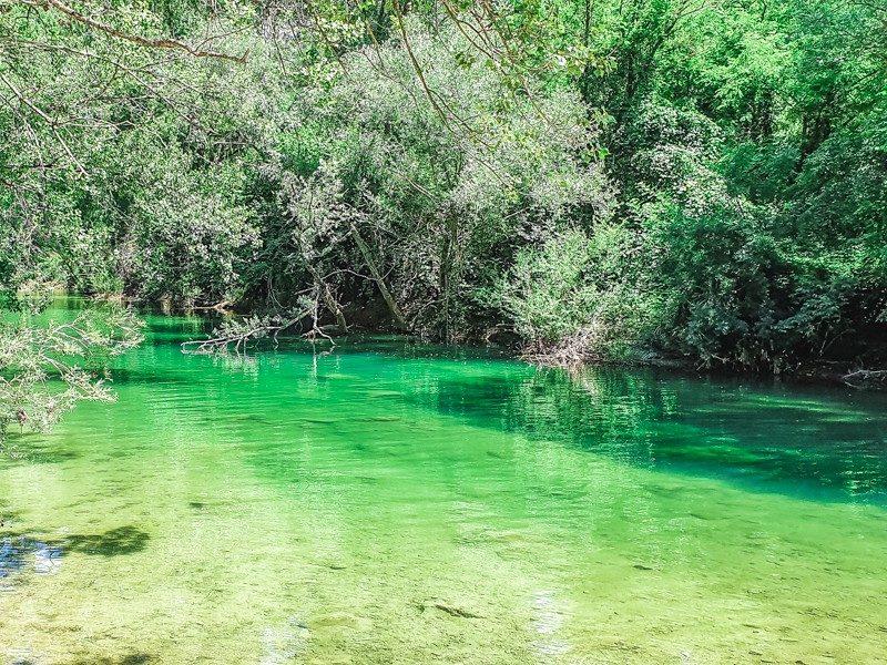 Tra le più belle riserve naturali in toscana c'è l'Alto Merse. L'acqua è veramente tanto limpida da vedere anche il fondale. Tutto viene contornato dalla verde vegetazione della riserva naturale.