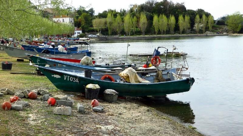Le tipiche barchette colorate dei pescatori di Marta Lago di Bolsena ormeggiate sul lungolago. Ci sono tutti gli attrezzi per pescare e i salvagente anulare arancioni. Sullo sfondo un viale alberato.